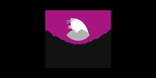 kandis_partner_schwalm-robotic